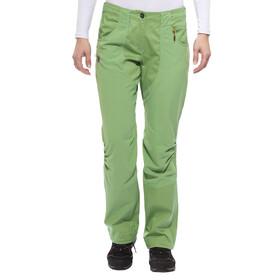 Salewa Hubella 2.0 lange broek Dames CO groen